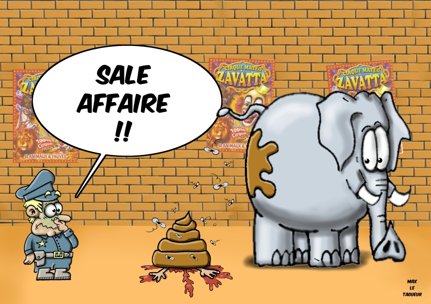 Sale Affaire